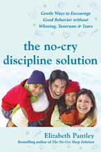Parenting Books by Elizabeth Pantley The No Cry Discipline Solution